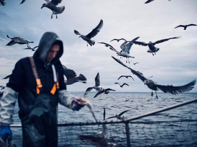 Unscharf im Vordergrund ein Fischer. der Rest des Bildes ist Meer und einHimmel voller Möwen